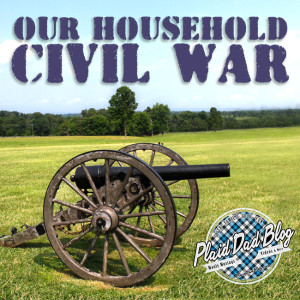 Our Household Civil War - Race, Age, and Adoption at PlaidDadBlog.com